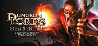 Dungeon Lords Steam Edition image
