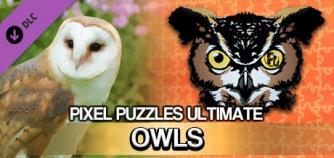 Pixel Puzzles Ultimate - Puzzle Pack: Owls image