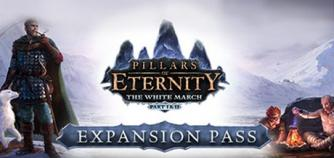 Pillars of Eternity - The White March Expansion Pass image