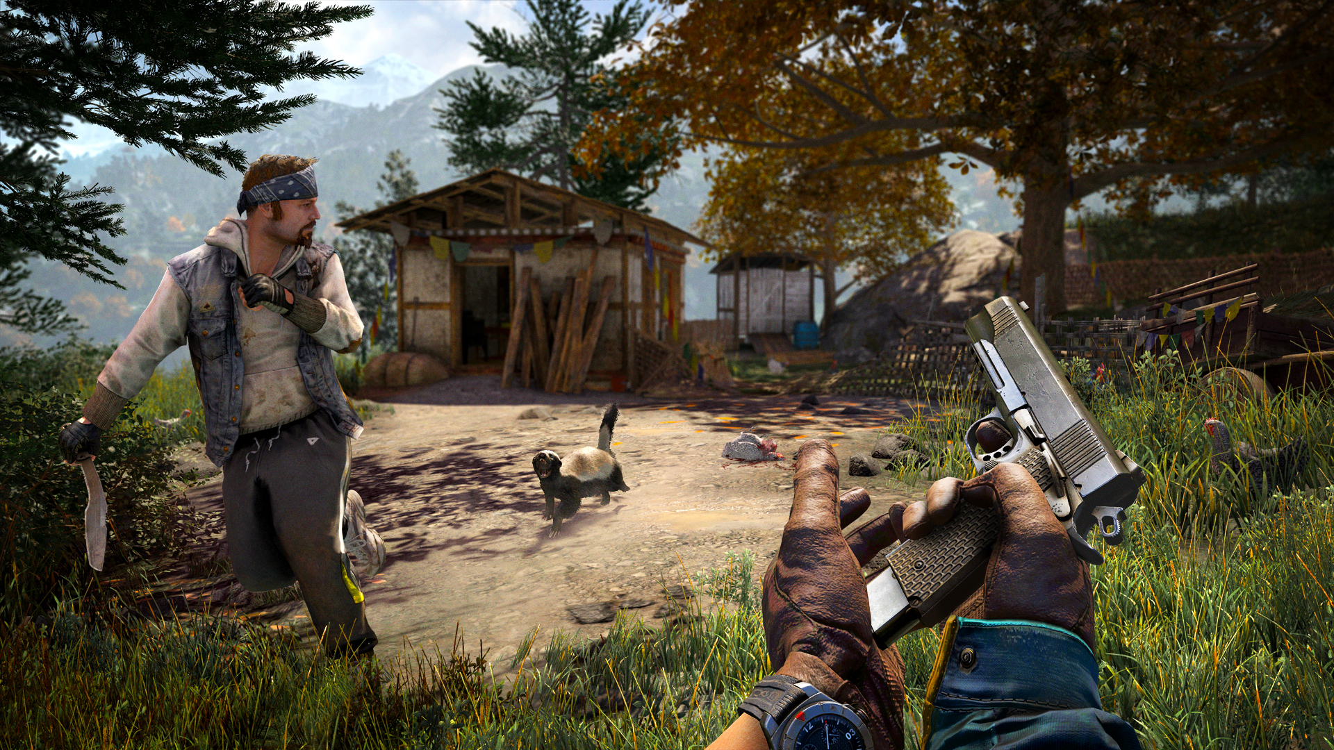 Far Cry® 4 game image