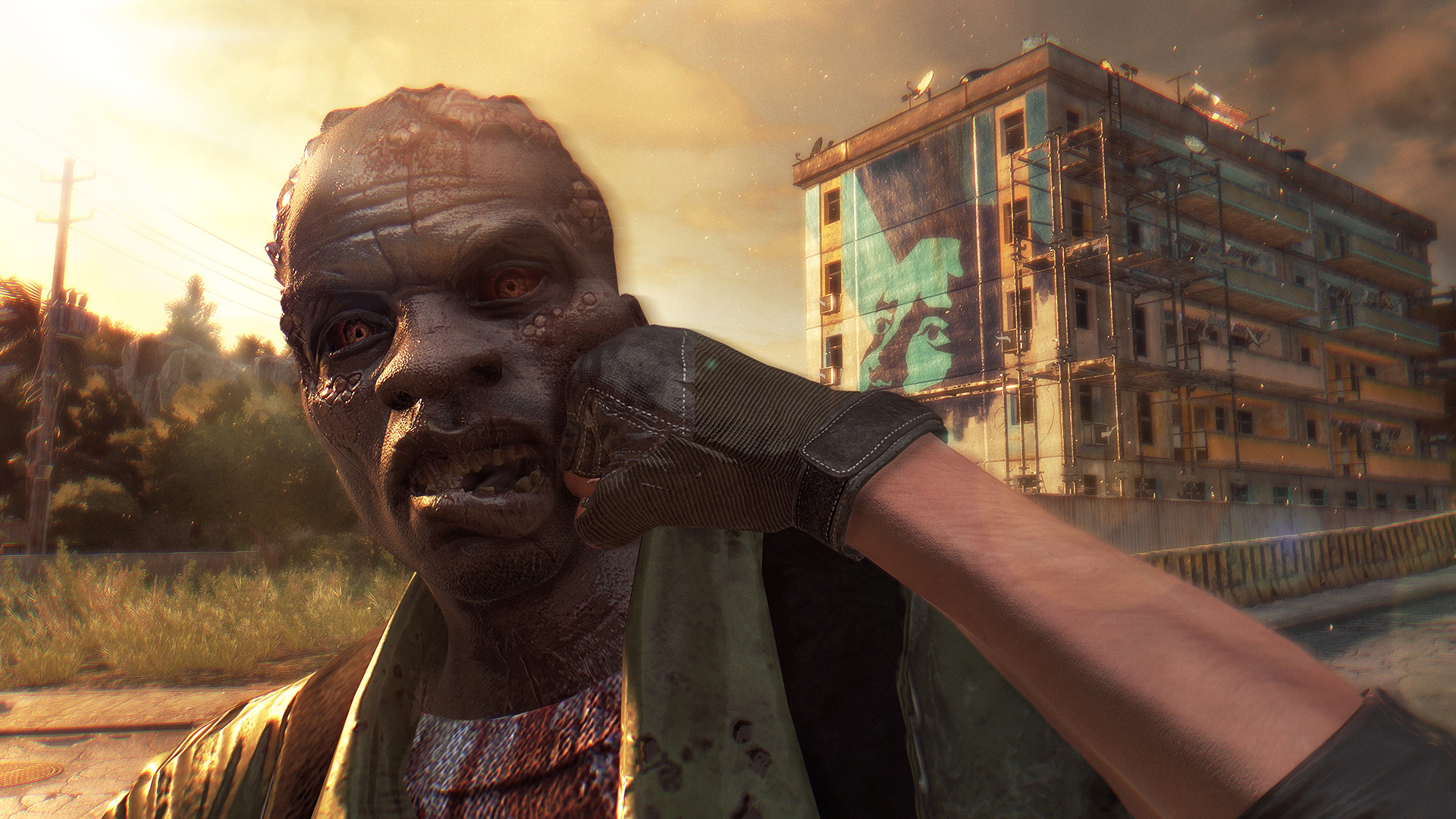 Dying Light Season Pass game image
